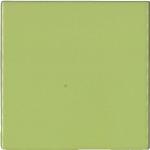 P/50 Verde Chiaro
